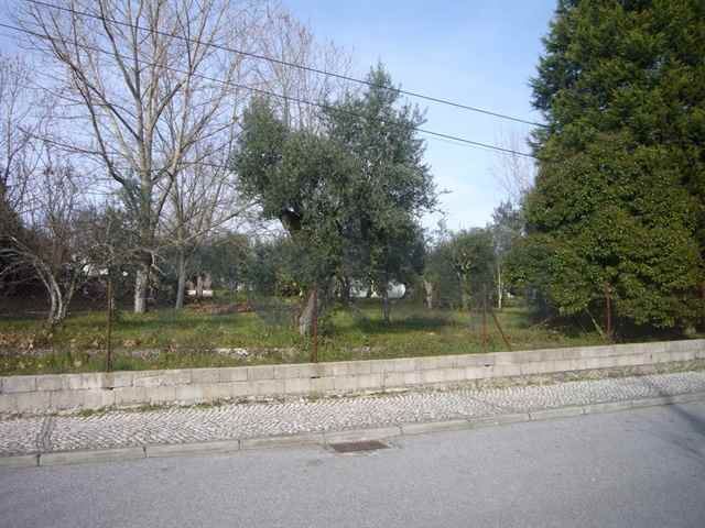 Terreno urbano, Carregal do Sal - 111564