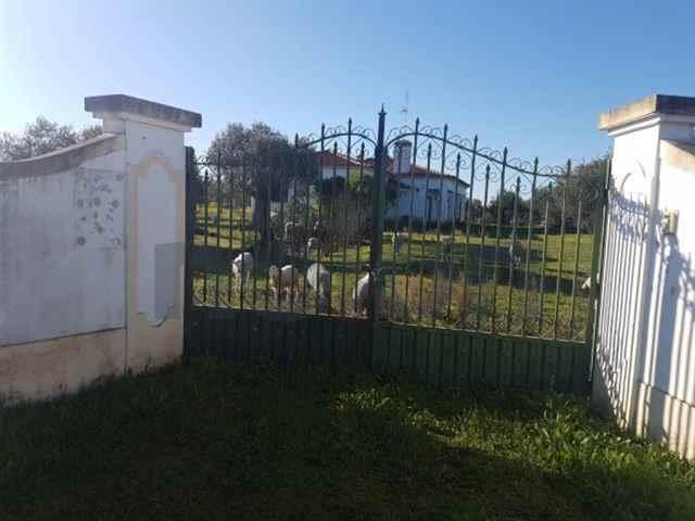 Moradia Isolada, Campo Maior - 111930