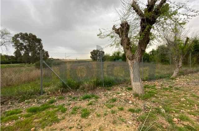 Urban land, Sevilla - 93971
