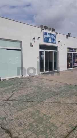 Local, Cadiz - 98111